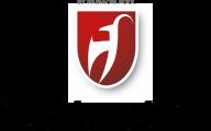 Sport Nenner - Toni Sailer Logo